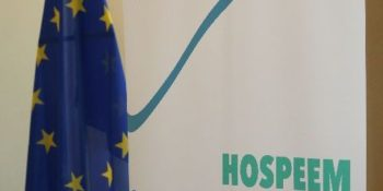 Sectoral Social Dialogue Committee for the Hospital and Healthcare Sector: Main activities and outcomes in 2017